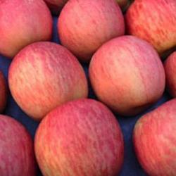 Ябълка (червена, дребна)