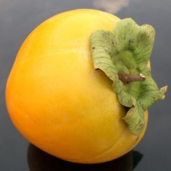 Ябълка (райска)