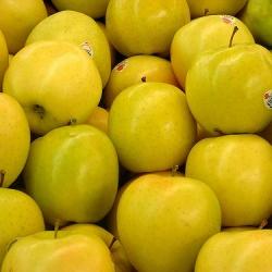 Ябълка (златна превъзходна)